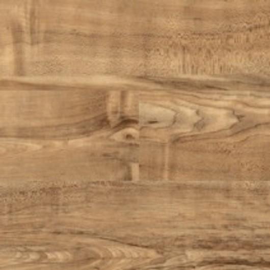 Nut Tree - 2202