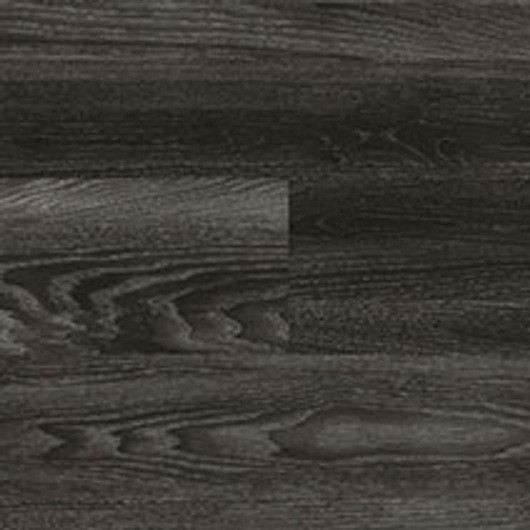 Black Elm - 6183