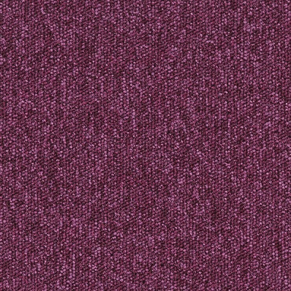 672726 Fuchsia