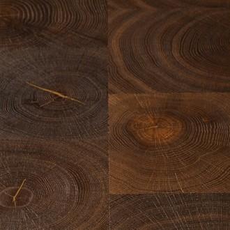 Cressida - European Oak