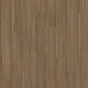 Canadian Elm 28872 Medium Wood