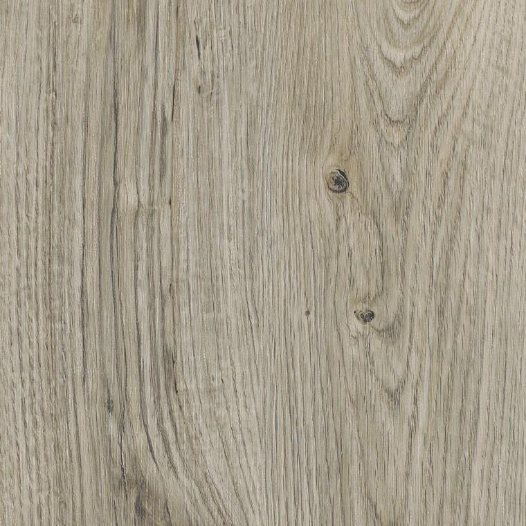 Sun Bleached Oak sc5w2531