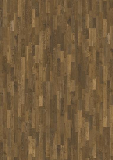 Oak Dusk 2