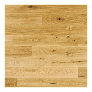 Oak Lacquered