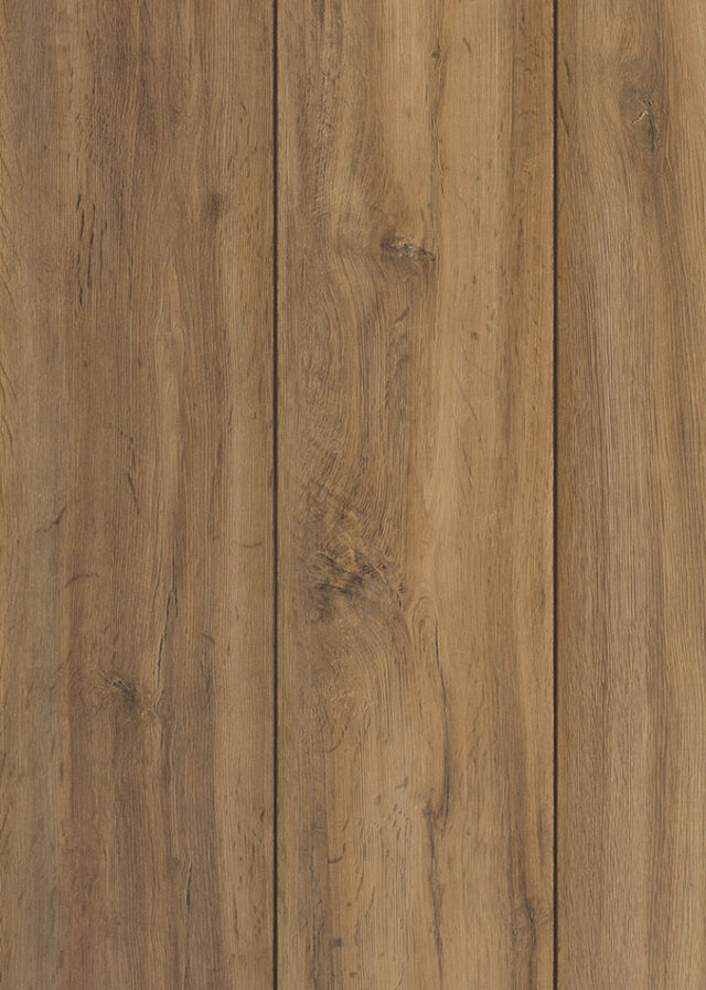 Urbino 47420 | Classen Style 8 Realistic | Close Up