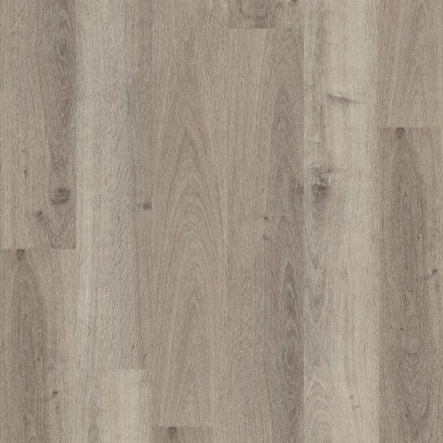 Highland Oak Canyon   Invictus Maximus Click   Plank