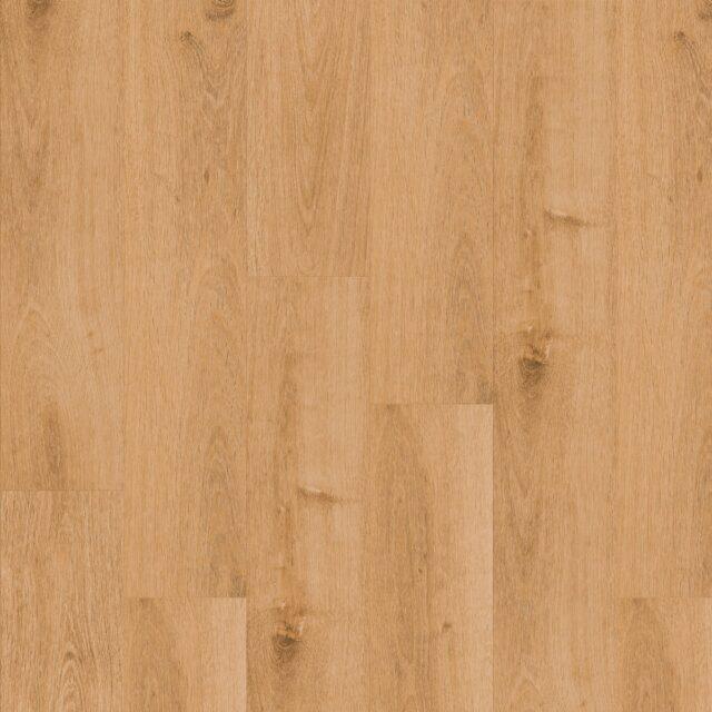 Highland OakClassic   Invictus Maximus   Plank