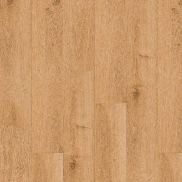 Highland Oak Classic | Invictus Maximus Click | Plank
