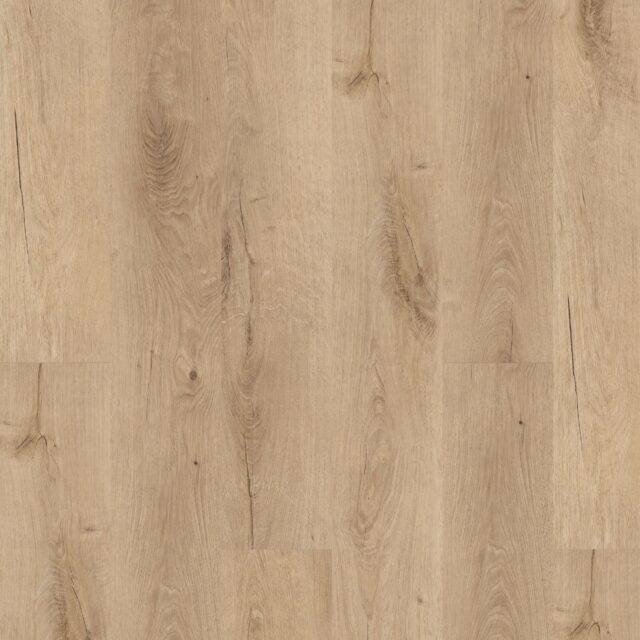 Royal Oak Blonde | Invictus Primus | Wood