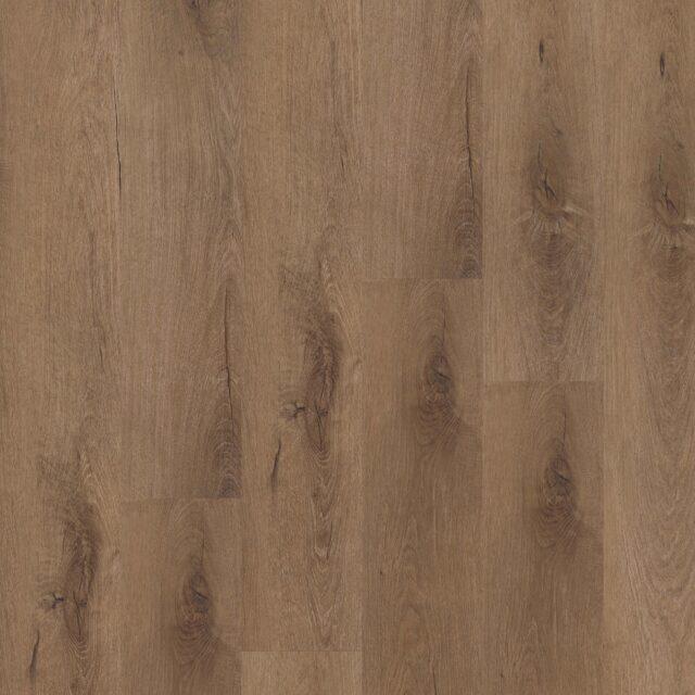 Royal Oak Mocca | Invictus Primus | Plank