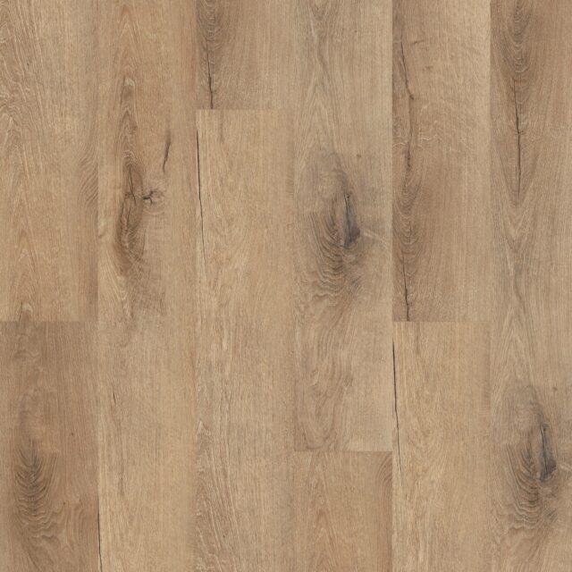 Royal Oak Traditional | Invictus Primus | Best at Flooring