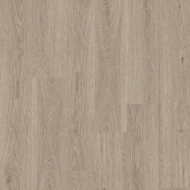 Sherwood Oak Shell   Invictus Primus   Best at Flooring