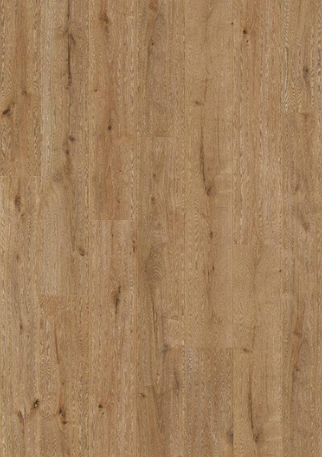 Forest Oak TRD61006   Balterio Traditions Laminate   BestatFlooring