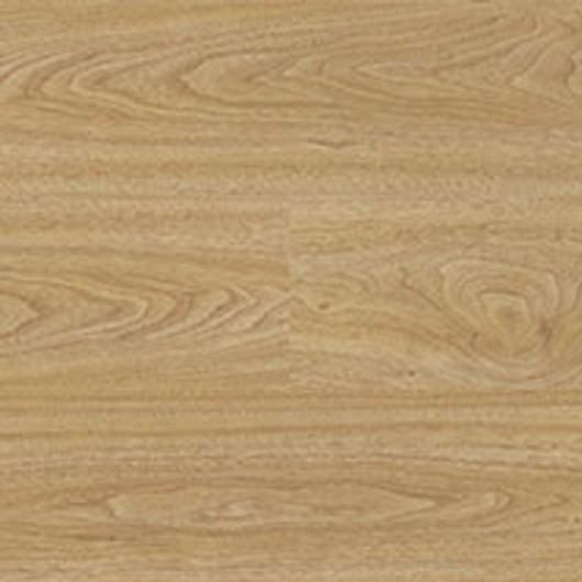 American Oak - 6139
