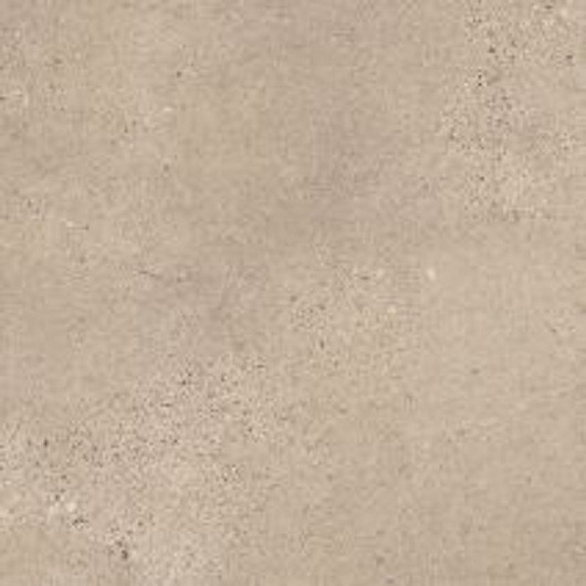 Fossil Limestone - 4537