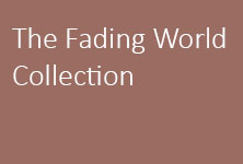 Fading World Medallion Collection