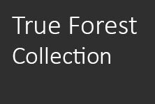 True Forest Collection